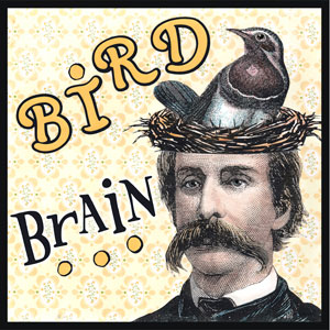 "Bird Brain - Originally from the 1920's, describing an individual who has difficulty focusing on things going on around them. A Bird-Brain is also considered ""flighty"". Also, a character from Marvel Comics published in the 1980's. Bird-Brain is one of the ""Ani-Mate"" creatures created by an insane geneticist called Ani-Mator who combines characteristics of animals and human beings."