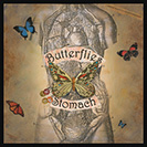 "Butterflies in my stomach - An anxious or ""fluttery"" feeling in your stomach."
